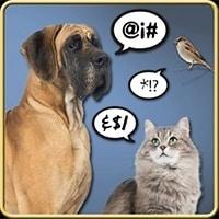 Aplicación para traducir lo que dice tu mascota