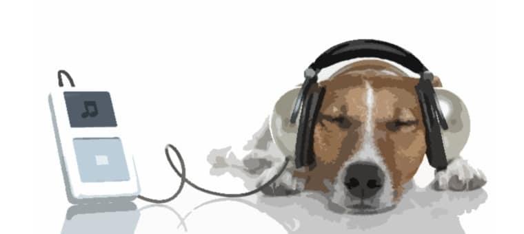 Las apps musicales más potentes del mercado