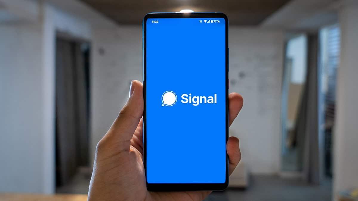 signal web